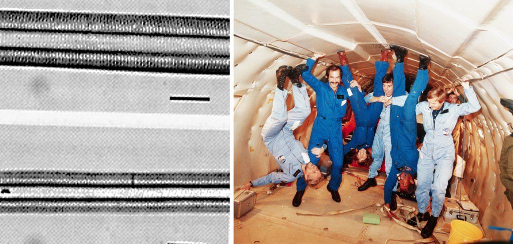Слева: на микрофотографии показаны нормальные волокна скелетных мышц (сверху) и атрофированные волокна скелетных мышц (снизу). Справа: астронавты тренируются в условиях микрогравитации.
